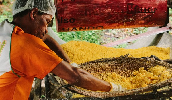 'Farinha de Uarini' produzida por ribeirinhos passa a ser vendida com selo Origens Brasil