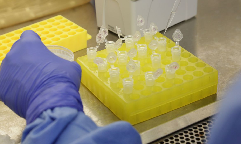 Fiocruz: vacina contra covid-19 pode chegar a testes clínicos em 2021