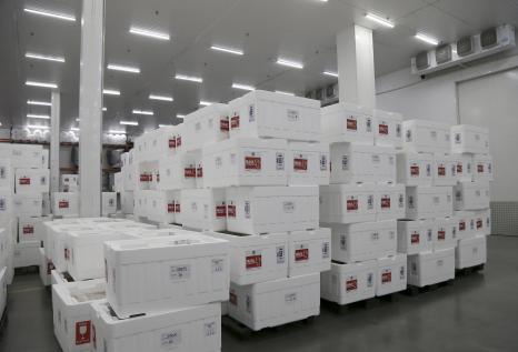 Defensoria questiona Estado sobre quantidade de vacinas enviadas aos municípios