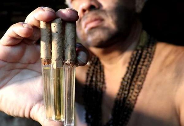 Documentário 'Amazônia Pura Essência' será lançado nesta quinta (06)