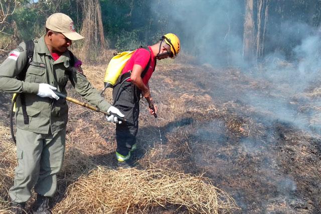 Amazonas vai receber investimento de R$ 11,5 milhões no combate às queimadas por meio de banco alemão