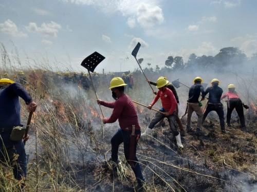 Estados da Amazônia Legal se unem para combater queimadas e incêndios florestais