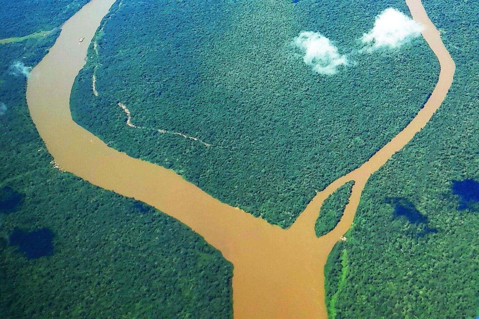 Dia da Amazônia é marcado por números negativos e preocupação ambiental