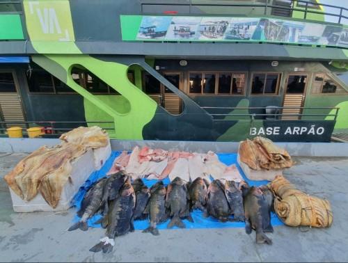 Base Arpão apreende mais de 700 quilos de pescado ilegal em embarcação