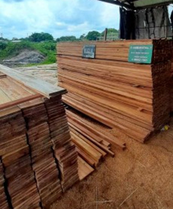Polícia ambiental apreende madeira ilegal em ação em Manacapuru