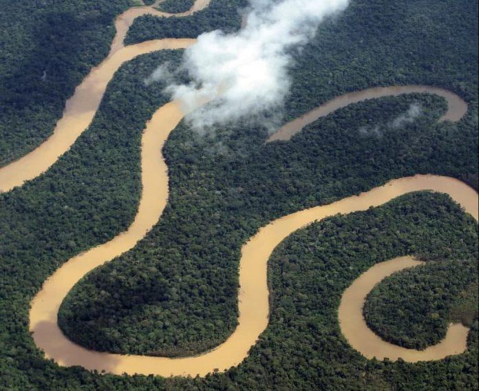 Sema e CI Brasil buscam empresa para realizar inventário florestal em Maués